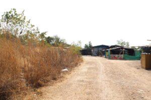 ขายที่ดิน อยุธยา บางปะอิน ติดถนน เหมาะทำบ้านจัดสรร ด้านหน้าถมแล้วบางส่วน