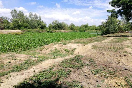 ขายที่ดิน สองพี่น้อง ตำบลเนินมะปราง ที่ดินถมแล้วติดถนนลาดยาง ด้านหลังติดคลอง