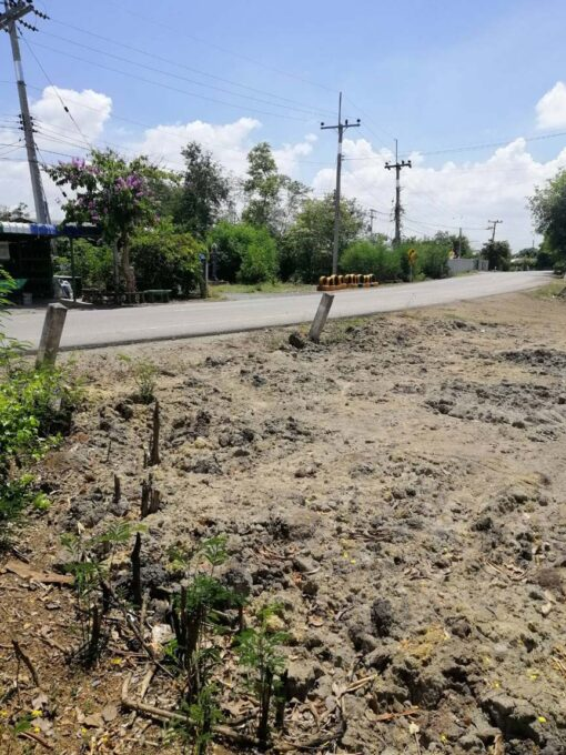 ขายที่ดิน สองพี่น้อง ตำบลเนินมะปราง ที่ดินถมแล้วติดถนนลาดยาง ด้านหลังติดคลอง ใกล้ชุมชน