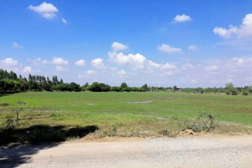 ขายที่ดิน สองพี่น้อง สุพรรณบุรี 21 ไร่ ทางเข้าที่ดินเป็นหินคลุก
