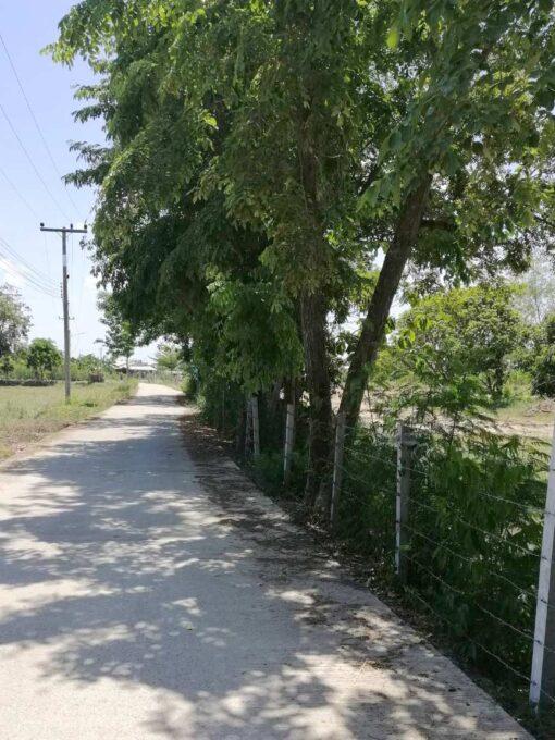 ขายบ้านพร้อมที่ดิน สุพรรณบุรี ล้อมรั้วรอบแปลงที่ดิน ติดถนนคอนกรีต
