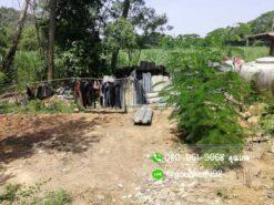 ขายบ้านพร้อมที่ดิน สุพรรณบุรี 300 ตรว. บ้านเดี่ยวมือสอง ที่ดินถมแล้ว