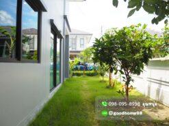 เดอะบาลานซ์ ปิ่นเกล้า-สาย 5 บ้านแฝดมือสอง ข้างตัวบ้านมีพื้นที่สีเขียว ปลูกต้นไม้